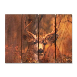 Perfect Look -22.5x16 Indoor/Outdoor Full Color Cedar Wall Art