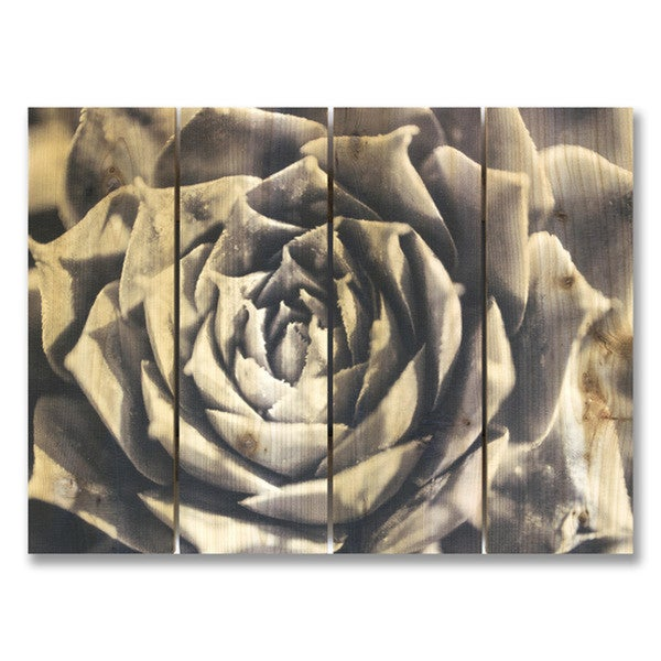 Simple Elegance 22x16 Indoor/Outdoor Full Color Cedar Wall Art