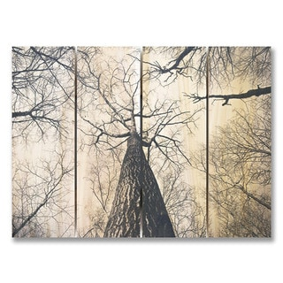 Among Giants 22x16 Indoor/Outdoor Full Color Cedar Wall Art