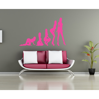 Evolution evolutionary chain girl lady Wall Art Sticker Decal Pink