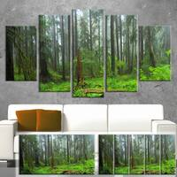 Designart 'Hoh Rain Forest' Landscape Photography Canvas Print 32x16 - Green