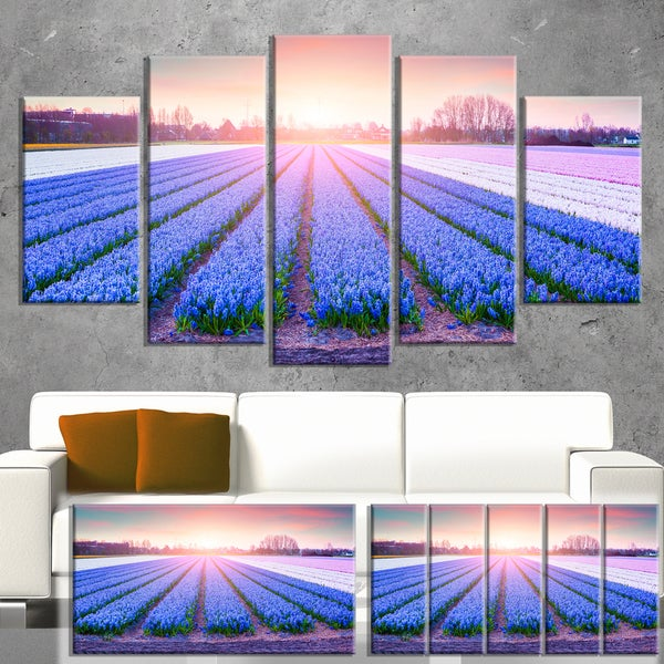 Designart 'Field of Blooming Hyacinth Flowers' Canvas Art Print 32x16
