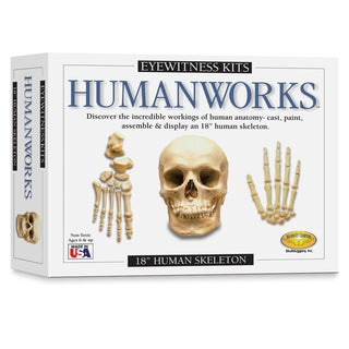 Eyewitness Humanworks Casting Kit