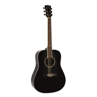 Eko Guitars NXT Series Black Dreadnought Acoustic Guitar