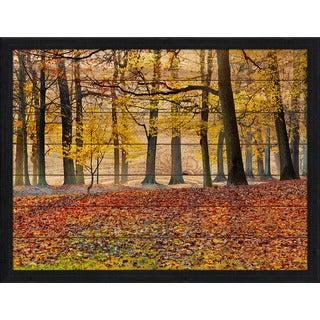 Forest Path' Giclee Wood Wall Decor