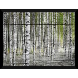 Birch Trees 1' Giclee Wood Wall Decor