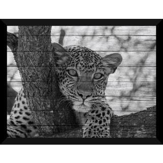 Leopard Giclee Wood Wall Decor