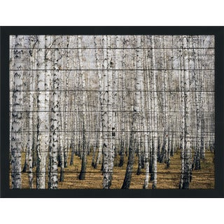 Birch Trees 3' Giclee Wood Wall Decor
