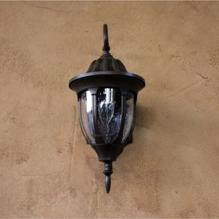 Samantha Brown Finish 1-light Exterior Light Fixture with Frosted Glass