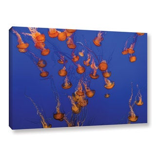Scott Campbell 'Flowing Pacific Sea Nettles 2' Gallery Wrapped Canvas