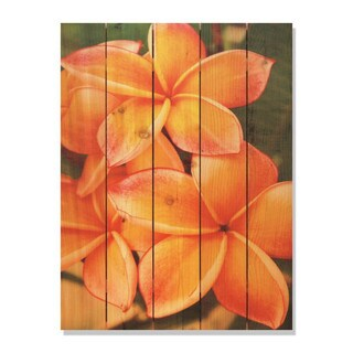 Tropical Flower 28x36-inch Indoor/ Outdoor Full Color Cedar Wall Art