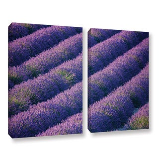 Simon Kayne 'Lavander Fields 2' 2-piece Gallery Wrapped Canvas Set