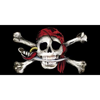 Kaufman Skull and Bones Beach Towel (Set of 2)