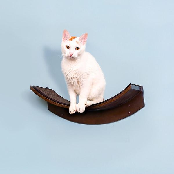 Lotus Leaf Cat Shelf from The Refined Feline. Opens flyout.