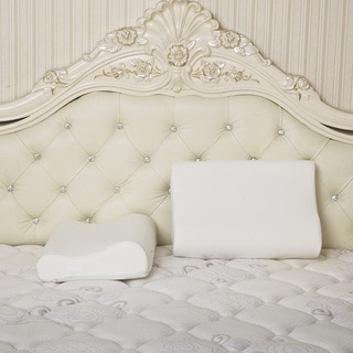 Link to Dasein Premium Contour Memory Foam Pillow with Cover (Set of 2) Similar Items in Pillows
