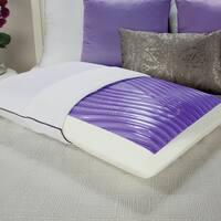 Sealy Optimum Optigel and Memory Foam Bed Pillow