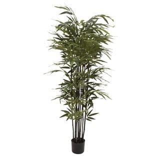 Natural Polyethylene Potted BK Bamboo Tree 27-inch, 70-inch