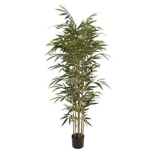 Natural Polyethylene Potted Bamboo Tree 38-inch, 70-inch - Thumbnail 0