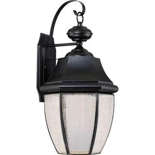Quoizel Newbury with Seedy Glass (LED) Large Wall Lantern
