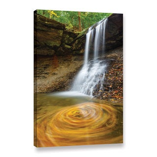 Cody York's 'Blue Hen Falls Swirling Leaves' Gallery Wrapped Canvas