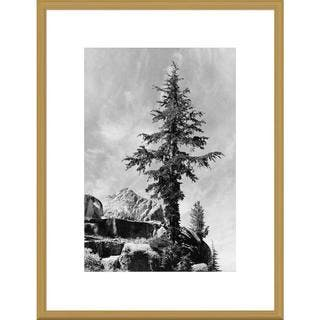 Global Gallery, Ansel Adams 'Tree and unnamed peak, Kings River Canyon, proposed as a national park,