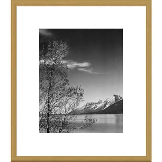 Big Canvas Co., Ansel Adams 'View of mountains with tree in foreground, Grand Teton National Park, W