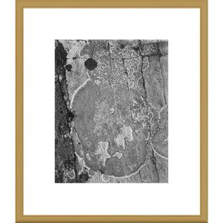 Global Gallery Ansel Adams 'Lichons, Glacier National Park, Montana' Framed Art