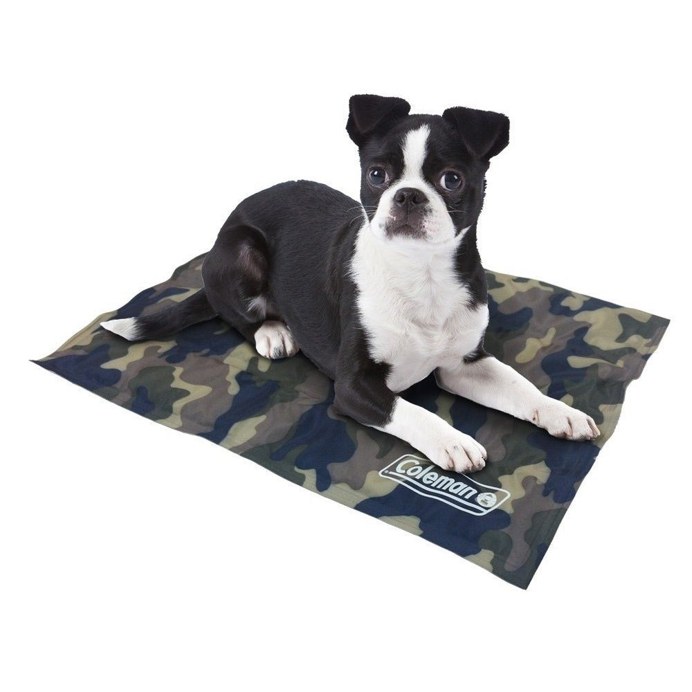 Coleman Small Comfort Cooling Gel 12 x 16-inch Pet Pad (G...