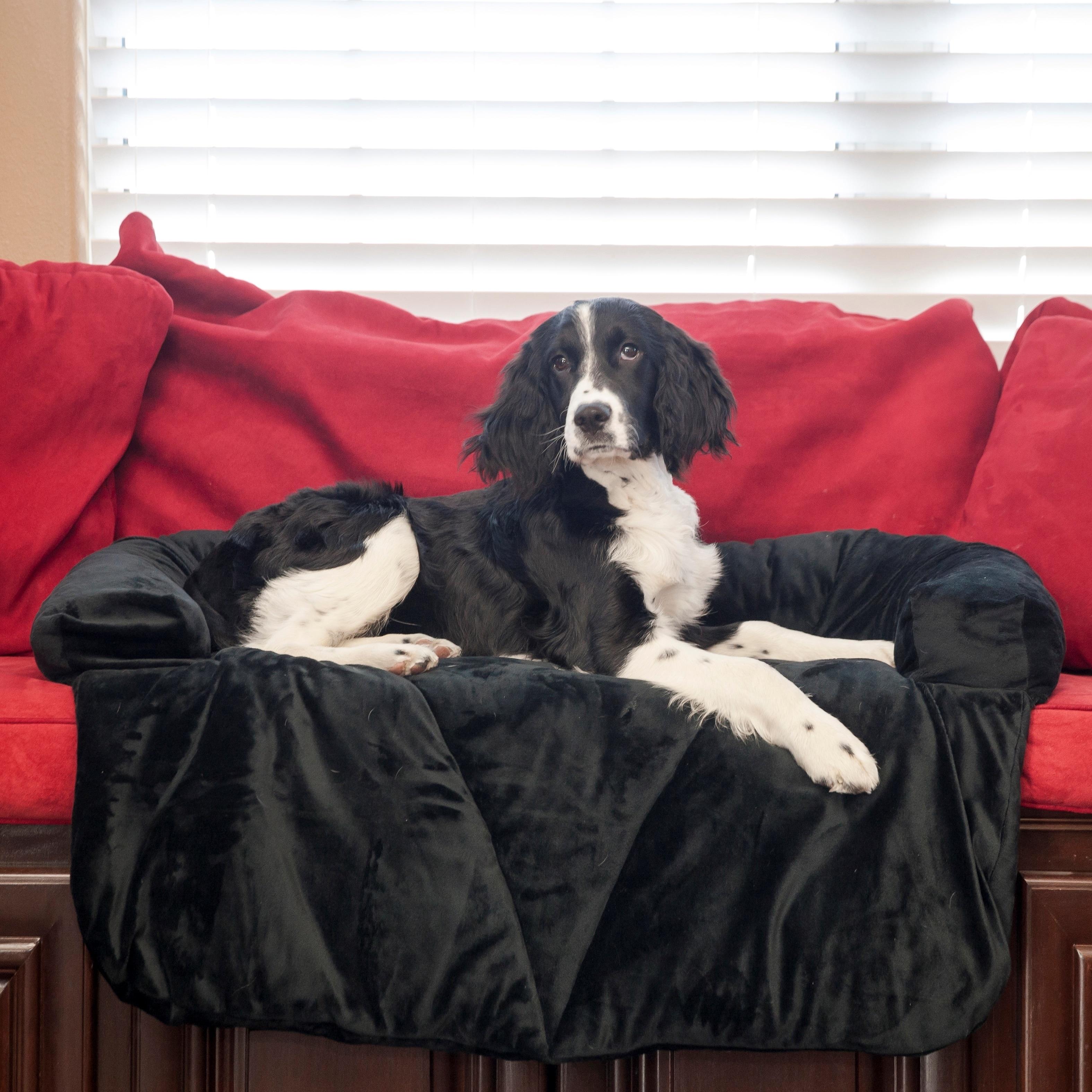 Integrity Bedding Plush Memory Foam Dog Bed/ Furniture Pr...