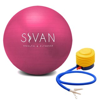 Burst Resistant Pink Stability Ball with Pump