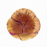 Pansy Copper Purple Canape Plate