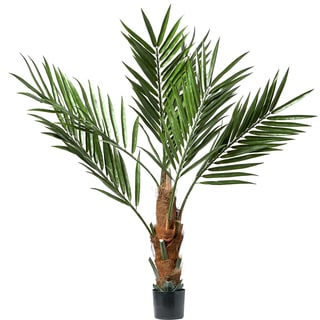 Pure Garden 60-inch Kentia Palm Tree