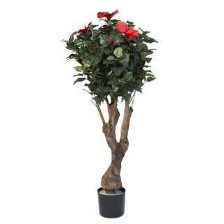 Pure Garden 48-inch Hibiscus Tree with Flowers
