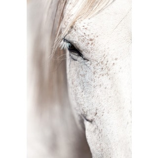 Marmont Hill 'Horse Eye' Print on Canvas