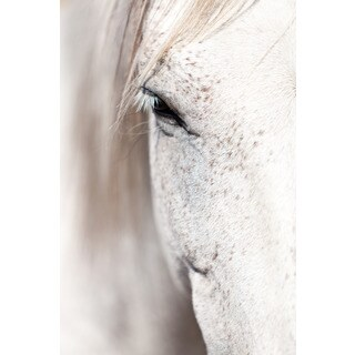 Marmont Hill 'Horse Eye' Print on Canvas - Multi-color (More options available)