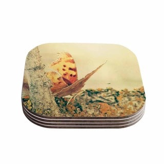 Sylvia Coomes 'Monarch Butterfly' Photography Nature Coasters (Set of 4)