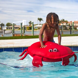 Big Joe Outdoor Pool Petz, Multiple Animals