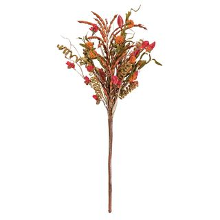 Benita Mountain Wild Flower Bundle