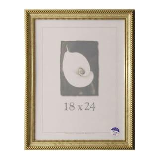 Napoleon 18 x 24 Picture Frame
