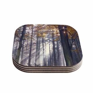 Kess InHouse Alison Coxon 'Autumn Sunbeams' Trees Photography Coasters (Set of 4)