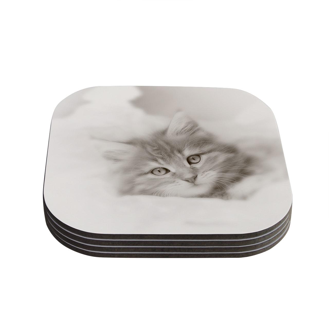Kess InHouse Monika Strigel 'Main Coon Kitten' Gray Cat C...
