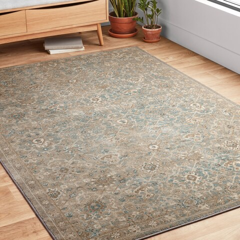 Traditional Beige/ Taupe Floral Distressed Rug
