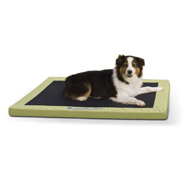 Shop K H Pet Products Comfy N Dry Indoor Outdoor Dog Bed Free
