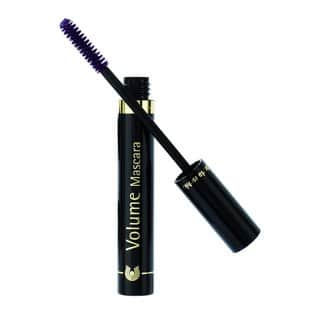 Dr. Hauschka Volume Mascara 03 Aubergine|https://ak1.ostkcdn.com/images/products/11817191/P18723727.jpg?impolicy=medium