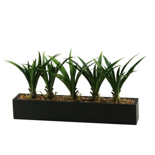 Lily Grass in Long Rectangular Planter Silk Plant