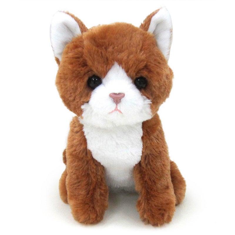 Kityu Gifts Brown Kitten Plush Toy (Brown)