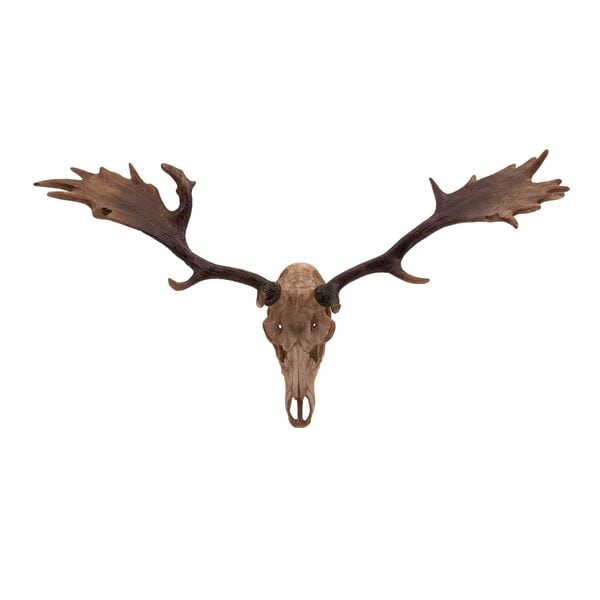 Trisha Yearwood Cowboy Deer Head Wall Décor