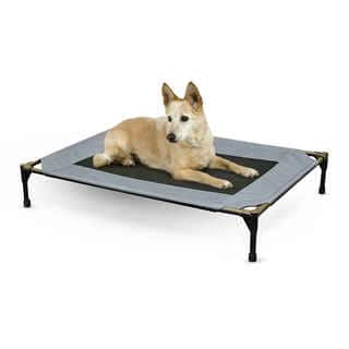K&H Pet Products Original Pet Cot Dog Bed|https://ak1.ostkcdn.com/images/products/11821594/P18727375.jpg?impolicy=medium
