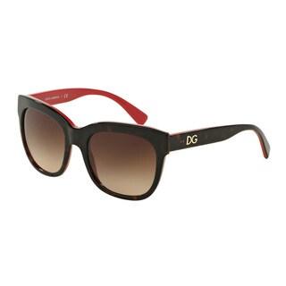 D&G Women's DG4272 300413 Havana Plastic Square Sunglasses