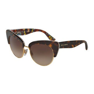 D&G Women's DG4277 303713 Havana Plastic Cat Eye Sunglasses